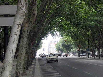 Lisboa Avenida Liberdade